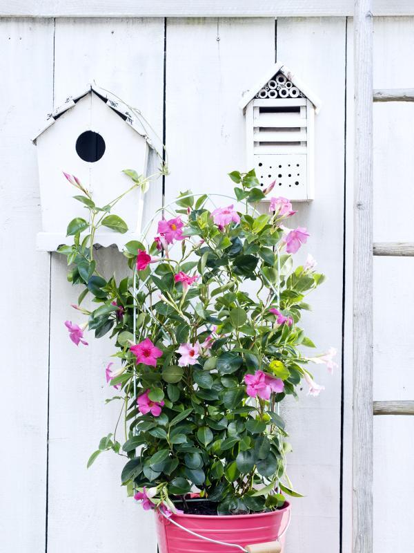 DIY: potten- en plantenrek Mooiwatplantendoen.nl